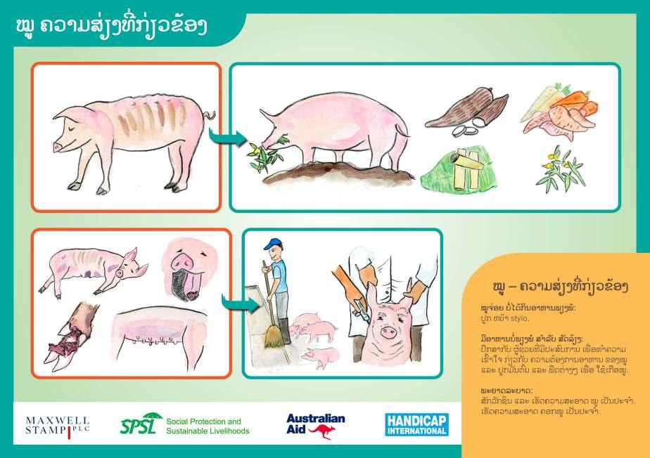 Pig Care & Risks LR_Page_2